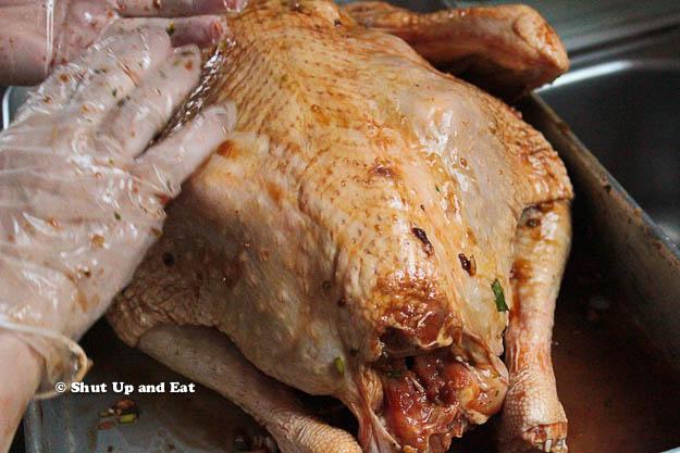 turkey-6_zps25af4eee